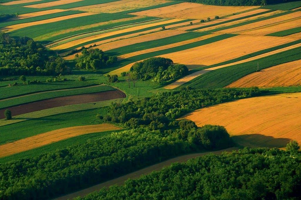 Zlatna Slavonija
