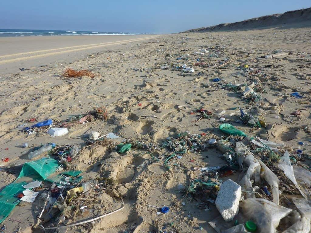 Svjetski Dan Oceana