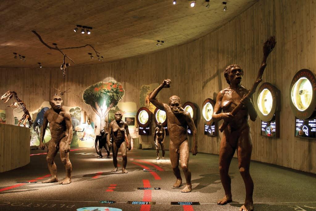 Ovo je fotografija Muzej Krapinskih Neandertalaca 00