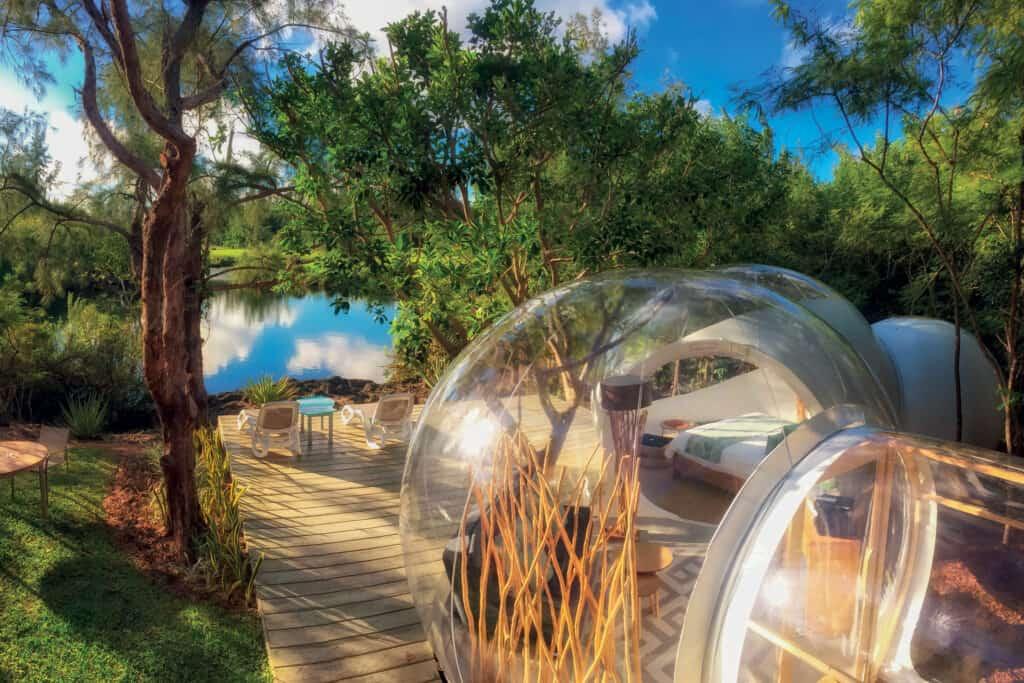 Ovo je fotografija bubble lodge