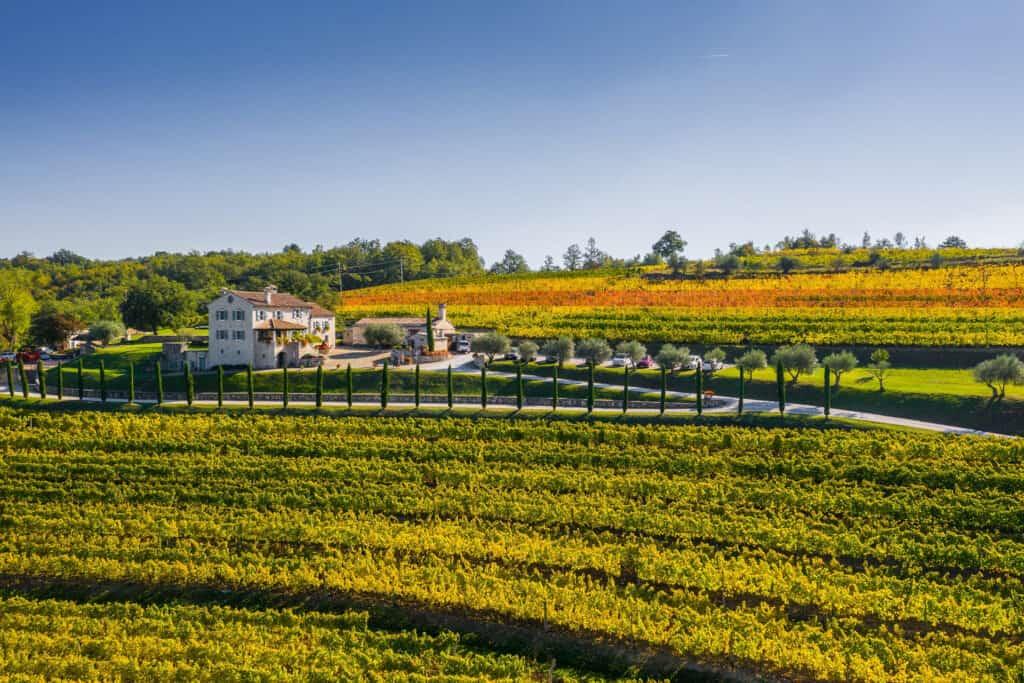 Ovo je fotografija vinarije Kabola