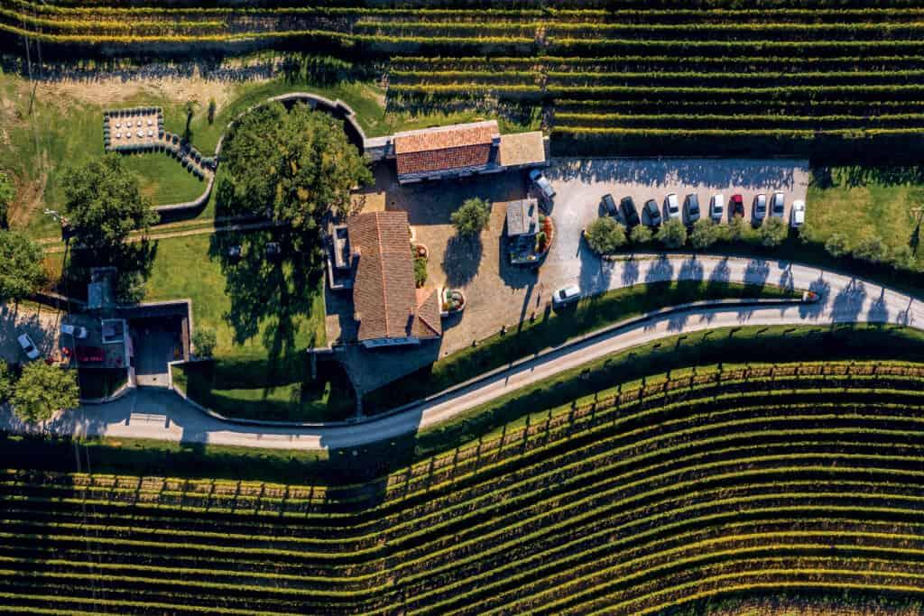 Ovo je fotografija vinograda kabola - biodinamička vina